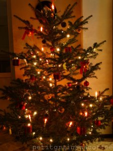watermarked - petitgrainandcoffee-newyeartree-2