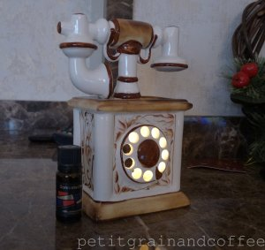 watermarked - 1petitgrainandcoffeestyxsunshine
